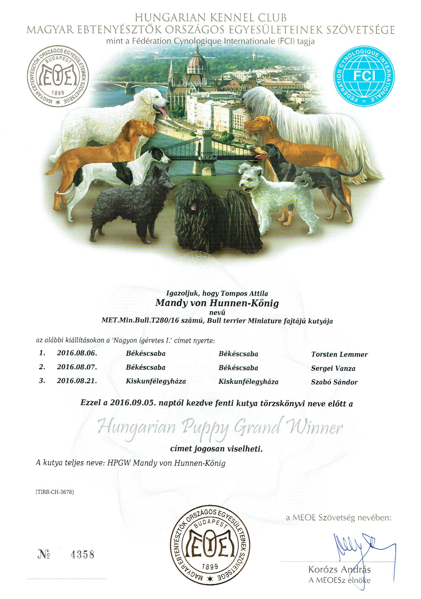 Hungarian Puppy Grand Winner - Mandy